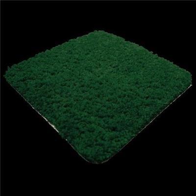 green machine carpet shooer